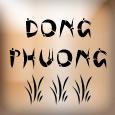 Dong Phuong Logo