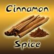 Cinnamon Spice Logo